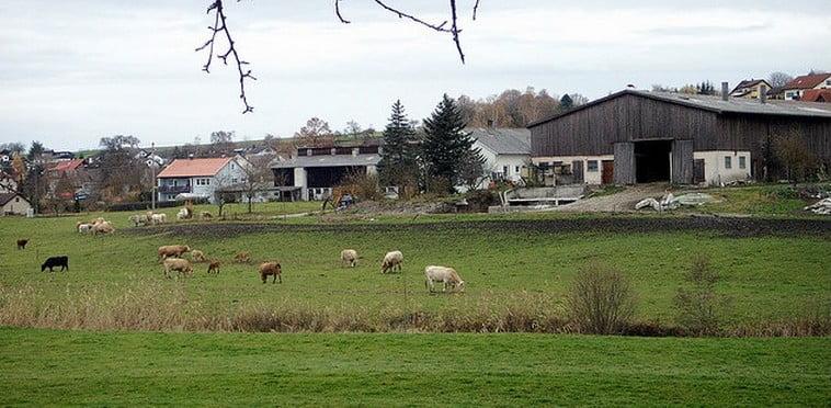Hettensberg Fronrot DSL