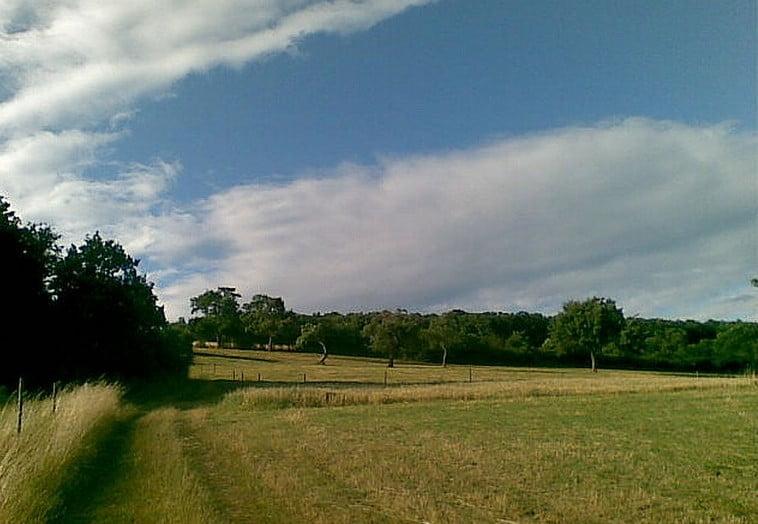 Landschaft bei Urbar
